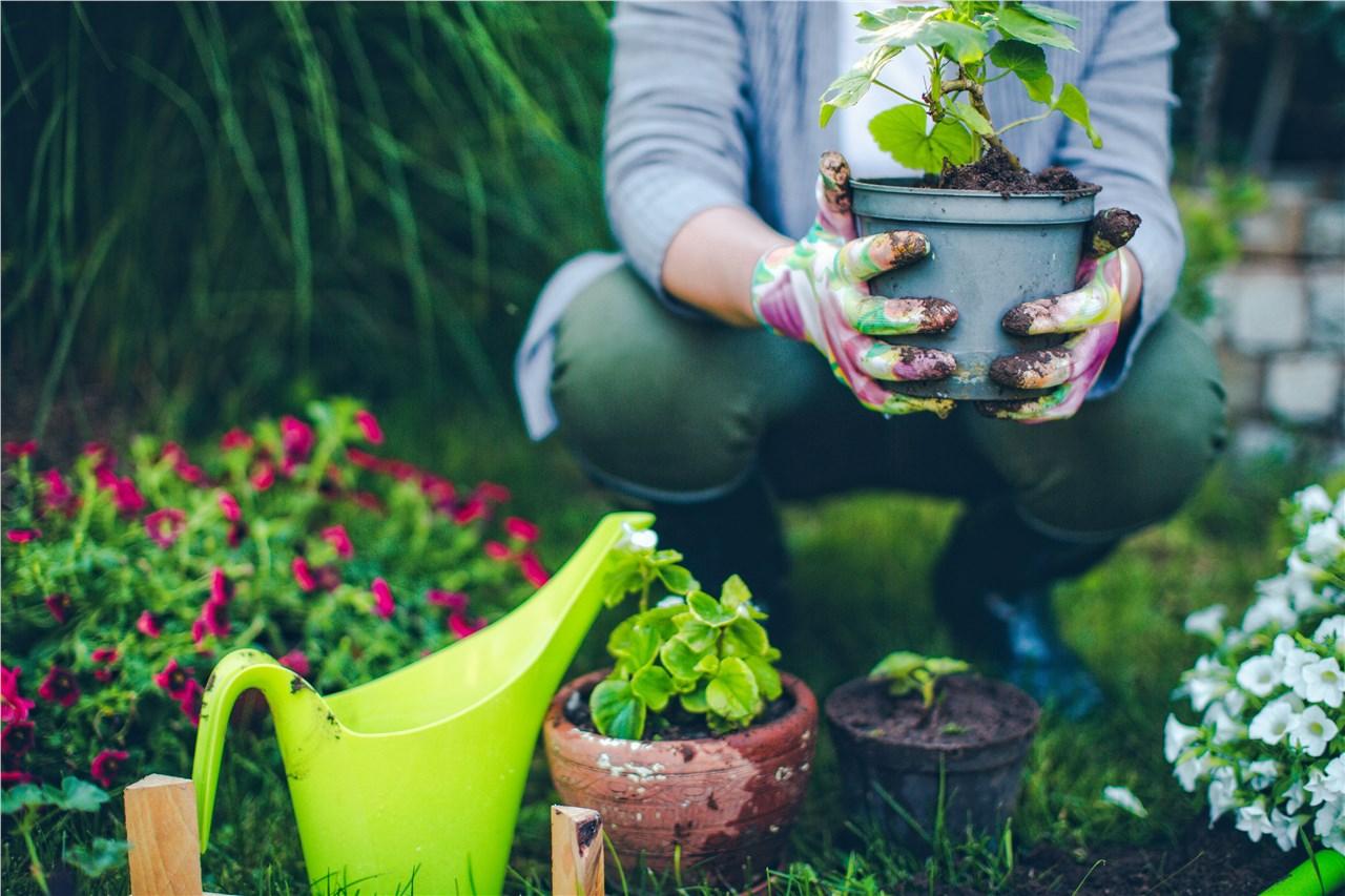 10 придобивки по човековото здравје од работењето во градина
