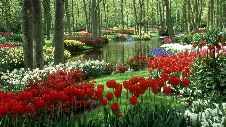 Најубавите цветни пејсажи низ светот